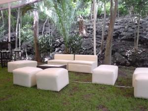 salas lounge vip y periqueras de cristal templado en renta