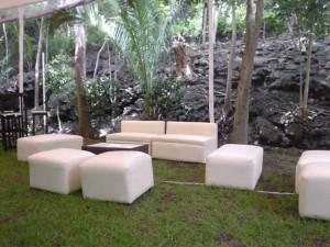 salas y periqueras tipo  lounge y mas