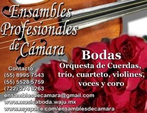 cuarteto clasico para bodas mexico