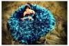 Fotografia profesional para novios, matrimonios, quincea�os. Monterrey